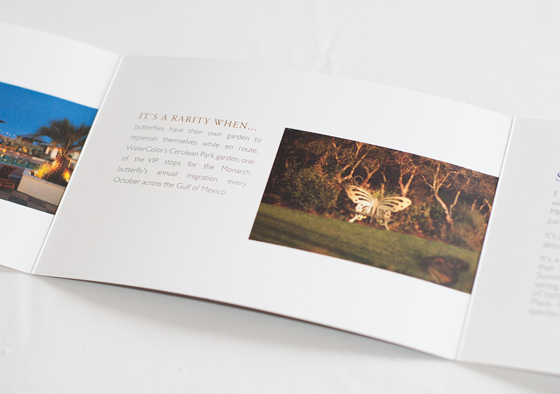 St Joe Water Color Brochure branding design print