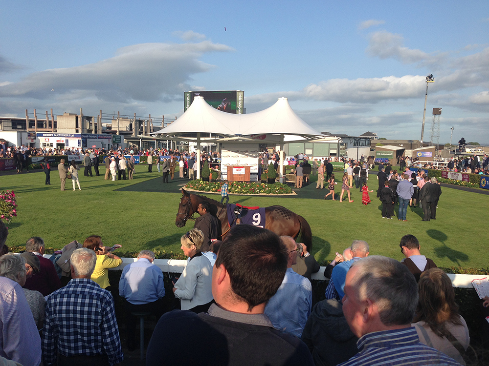 Galway Races in Ireland The Idea Boutique