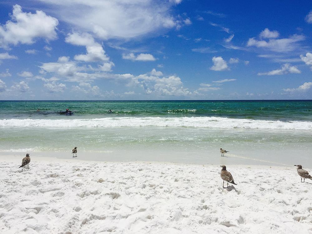 Beach in Destin Florida. Cl