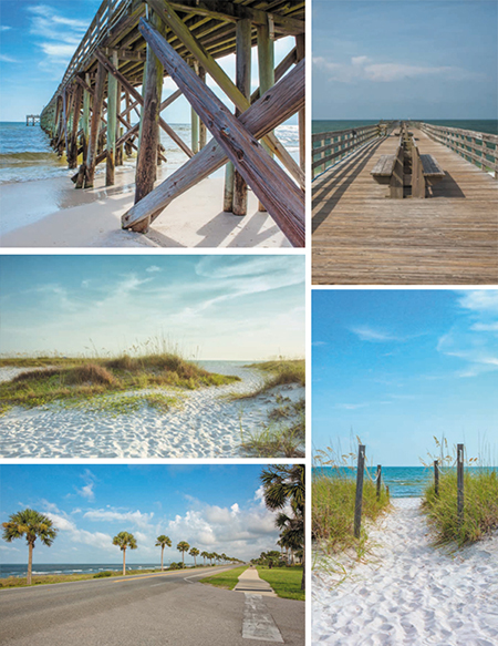 Scenery Inspiration Board Mexico Beach Florida Photo Shoot