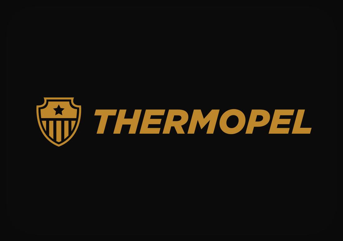 The Idea Boutique, Thermopel Logo Design